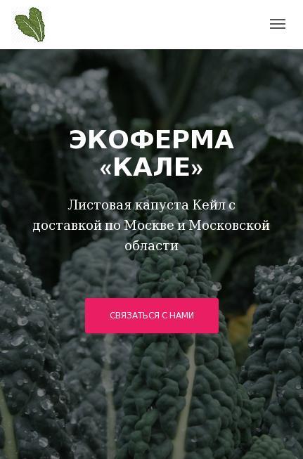 """Корпоративный сайт для подмосковной экофермы """"Кале""""."""